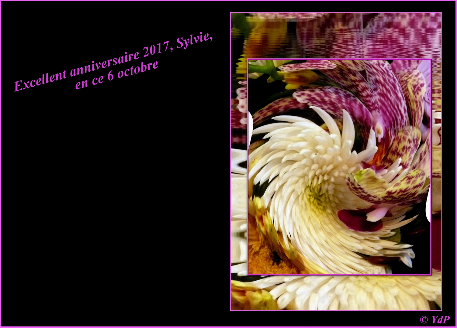 Excellent anniversaire 2017, Sylvie !...