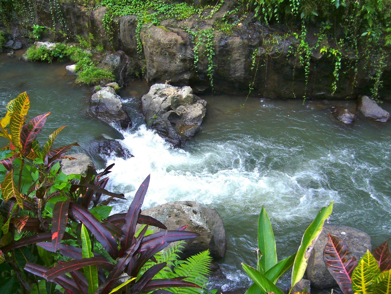 exotischer Fluss