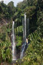 Expedition auf Bali (3)