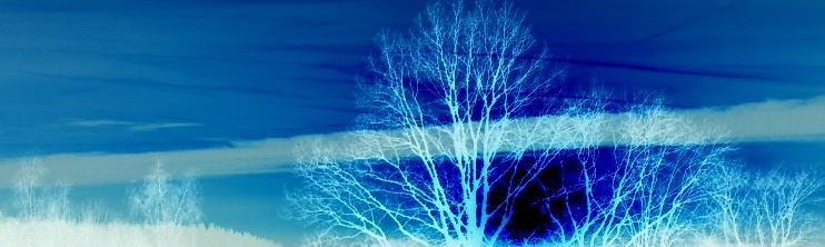 Experience Blue I