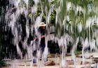Experiment - Blick durch einen Wasserfall