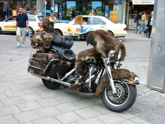 Ey mann, wo ist mein Motorrad?