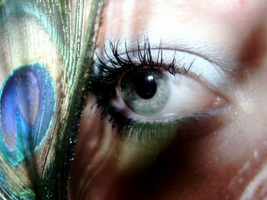 ~Eyecatcher~