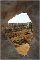 eyeing the beauty of bryce