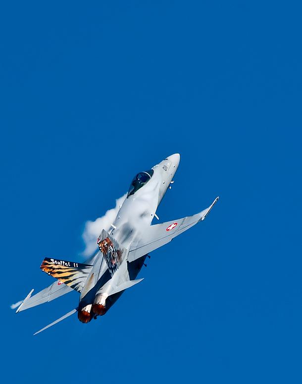 F-18 Hornet  Dittingen-2007