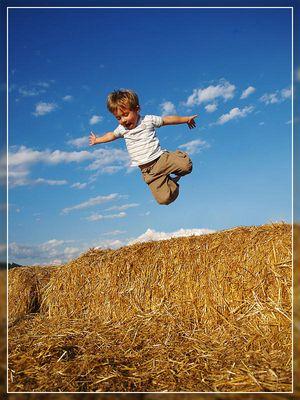 Fabios Jump