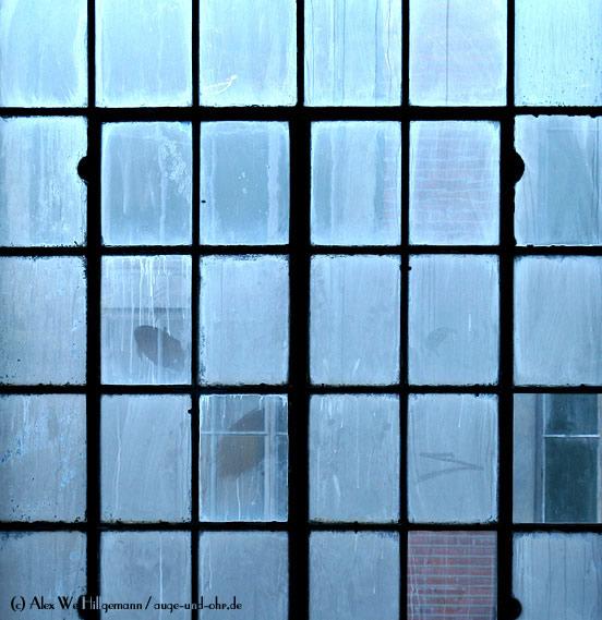 Fabrikfenster