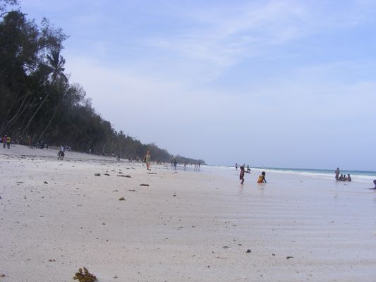 Fabulous Diani beach