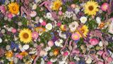COM: Fabulous flowers de Sally Dunn