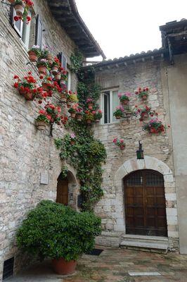 facciata fiorita