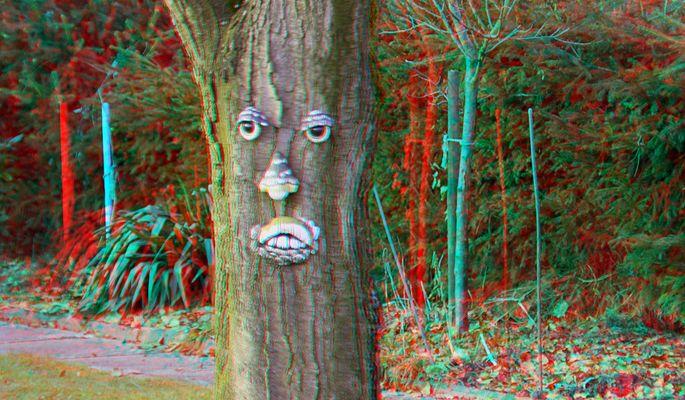 Face (3D für rot/cyan Brille)