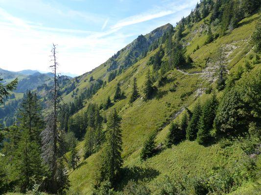 Face Ouest du Moléson (Gruyère - Fribourg)