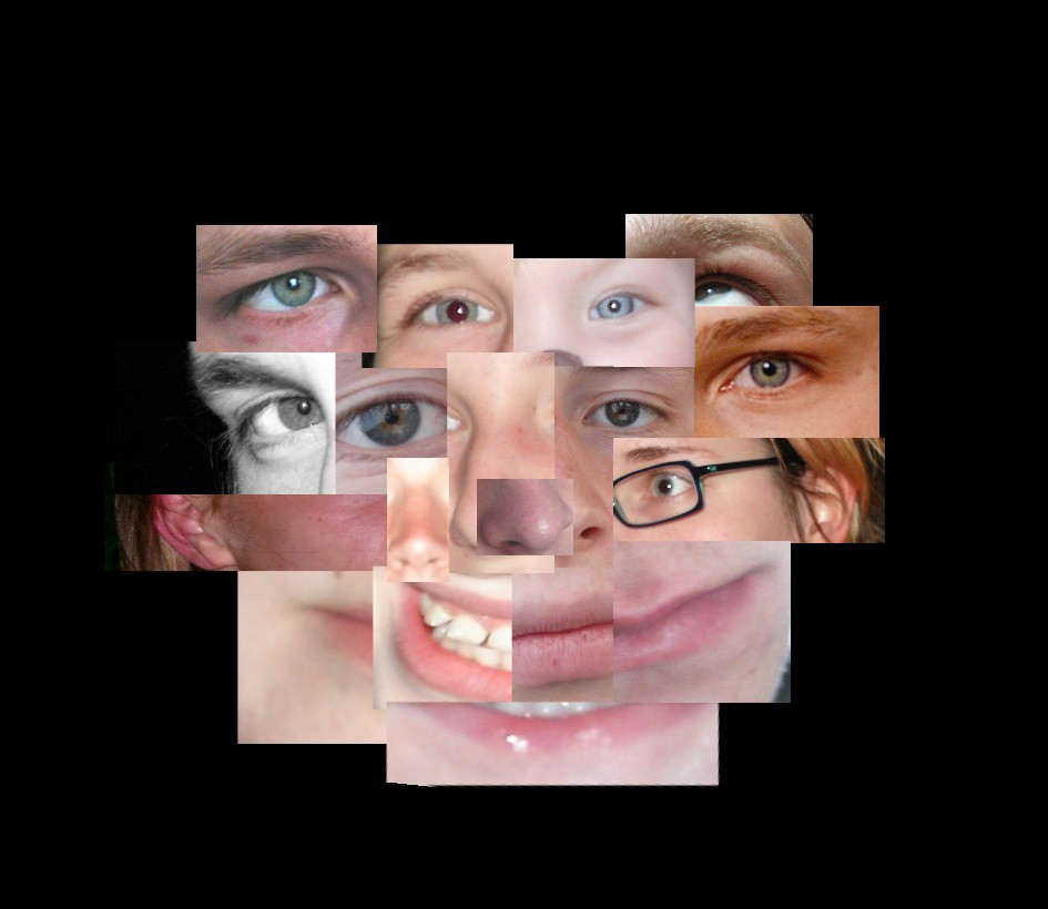 face - torn to pieces (reloaded)