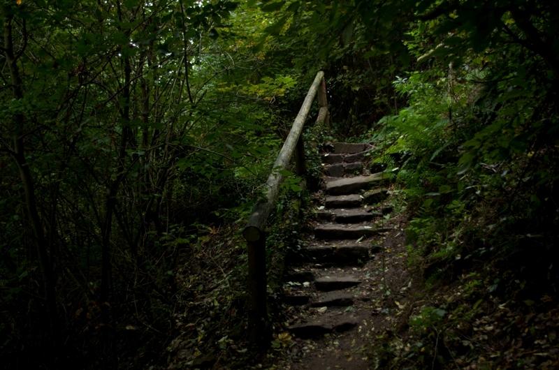 Facebook:Natur Foto
