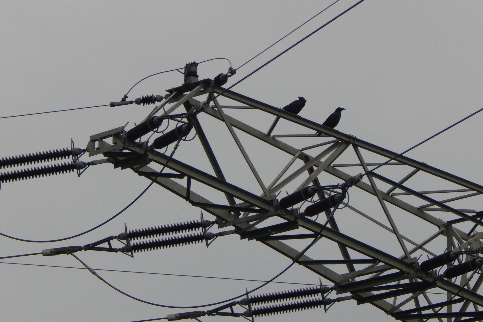 Fachgespräche über Strom