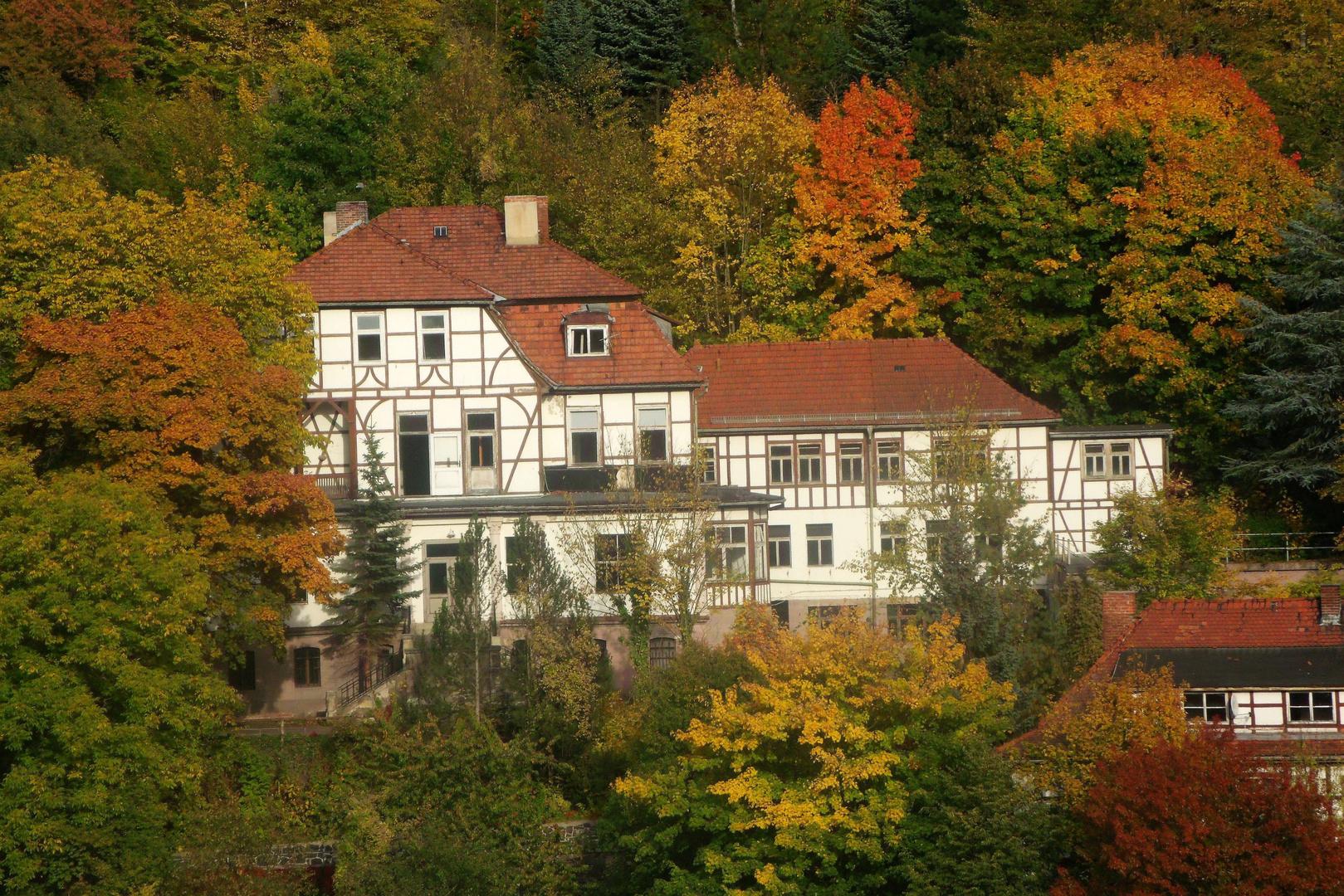 Fachwerk im Herbstwald