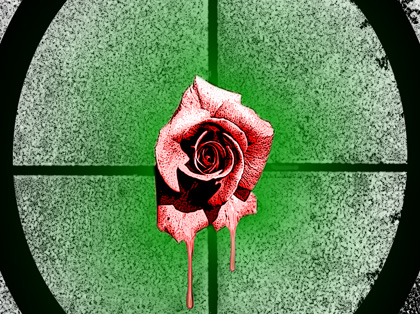 Fading The Rose...