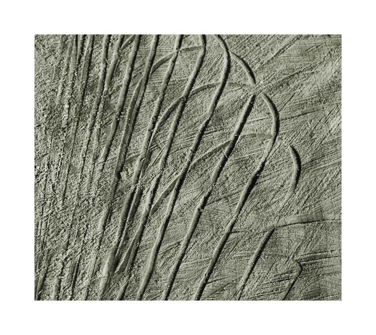 fächerförmig -gelöst-