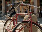 Fahrrad 1