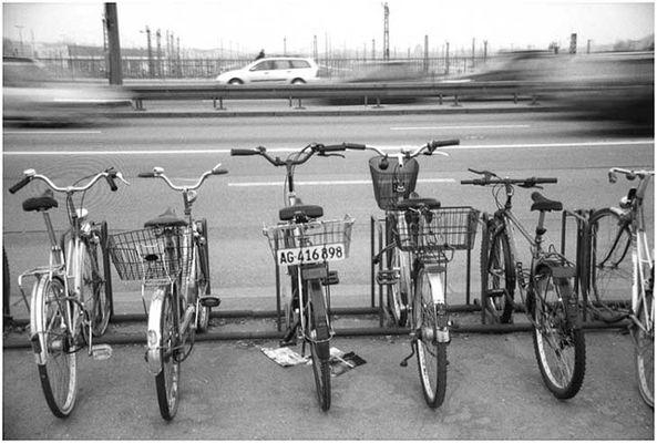 Fahrrad contra Auto