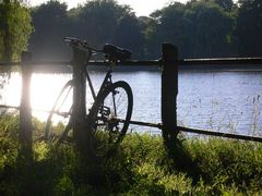 Fahrrad im Grünen