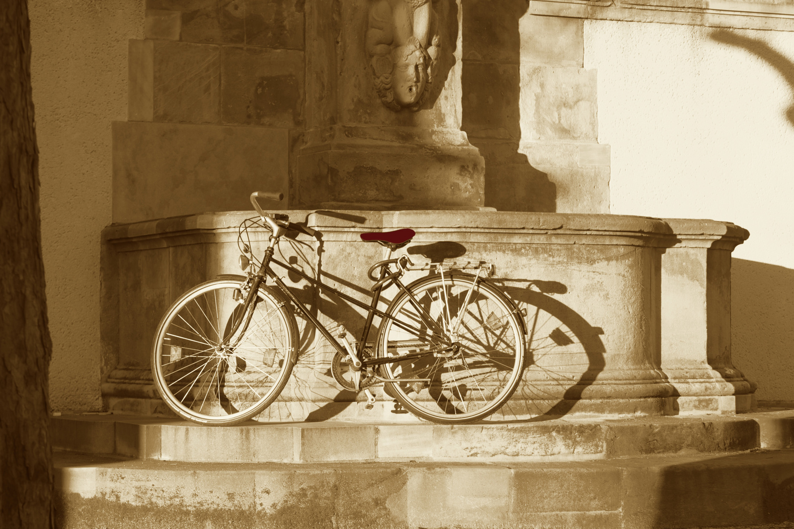 Fahrrad in der Abendsonne