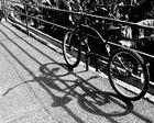 Fahrrad in der Sonne
