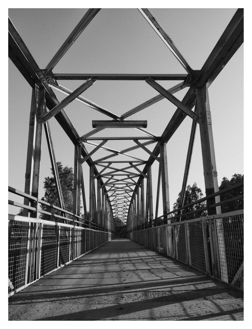 "Fahrradbrücke am "" Alten Neckar"""