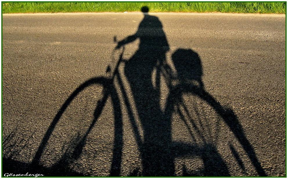Fahrradtour im Abendlicht