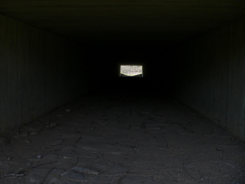 Fahrradtunnel unter der A45 da bin ich durch