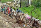 Fahrräder von neu bis alt (gesehen auf Mallorca)