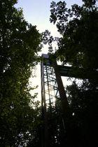 Fahrstuhl im Wald