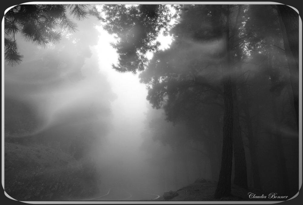 Fahrt durch die Wolken
