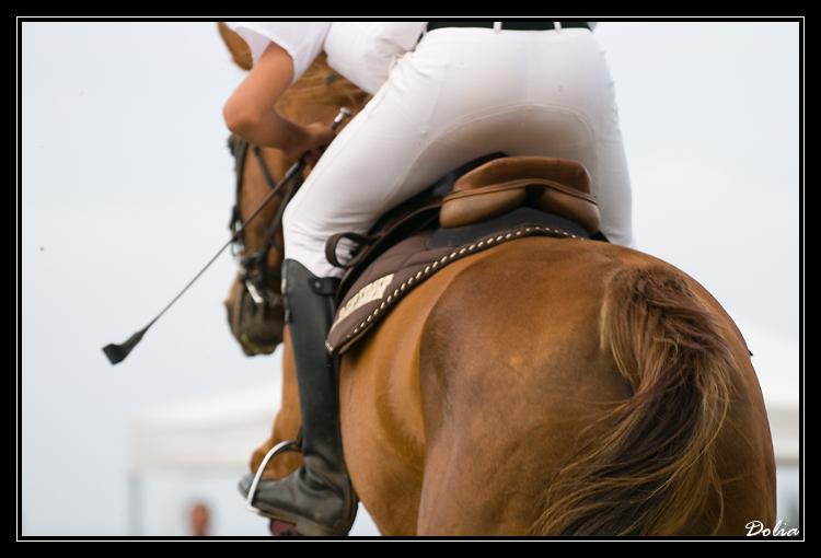 Faites du cheval