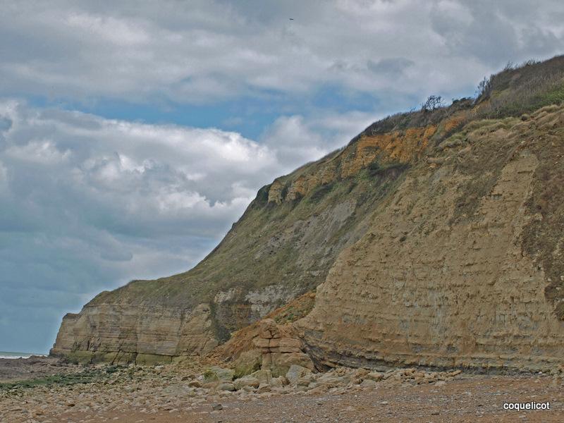 Falaise de Sainte Honorine des Pertes,toujours près d'Arromanches