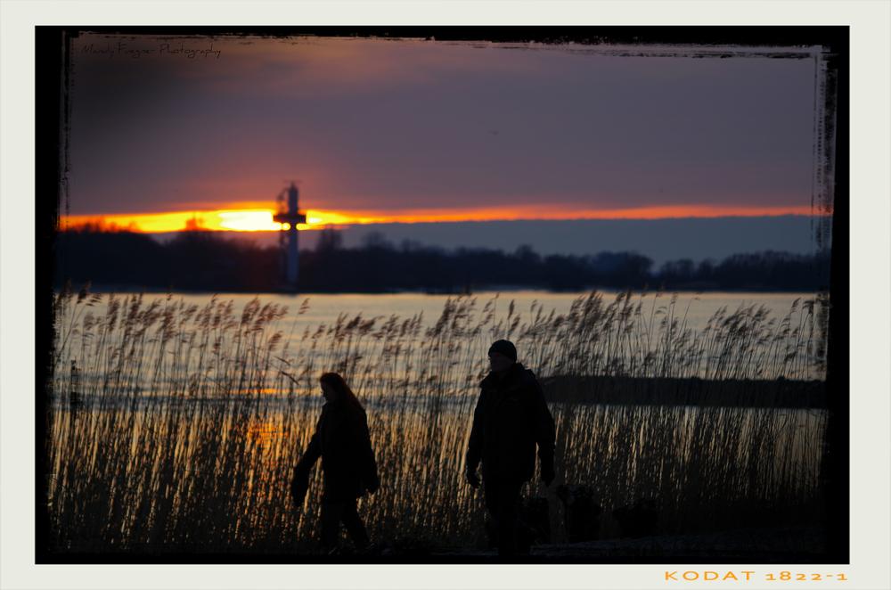Falkensteiner Ufer 2.0