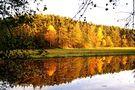 fall - Herbst von Helene-Steffi
