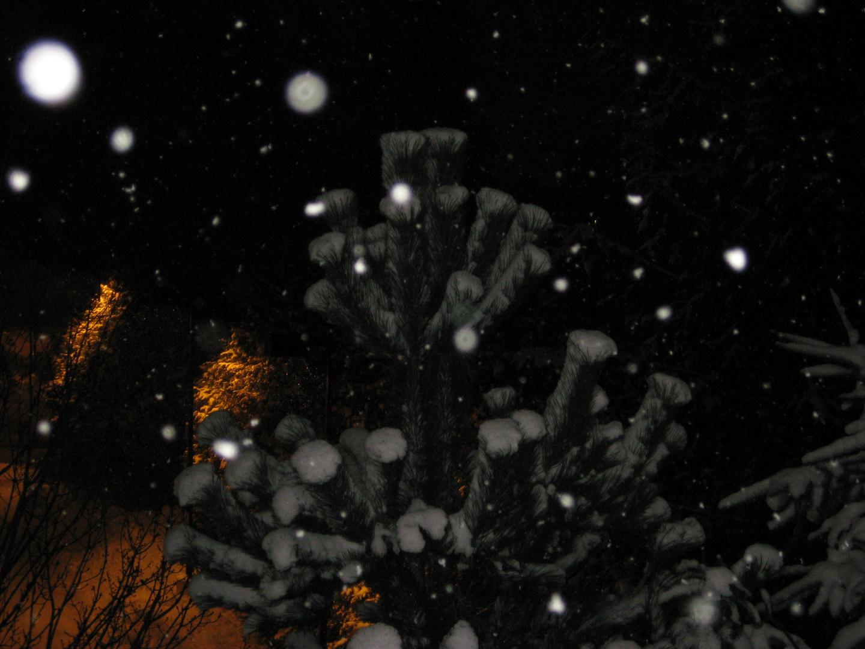 Falling Snow .