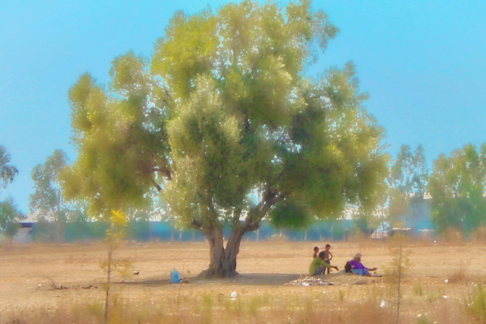 Familie unterm Baum