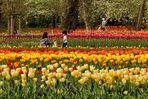 Familien im Britzer Garten...