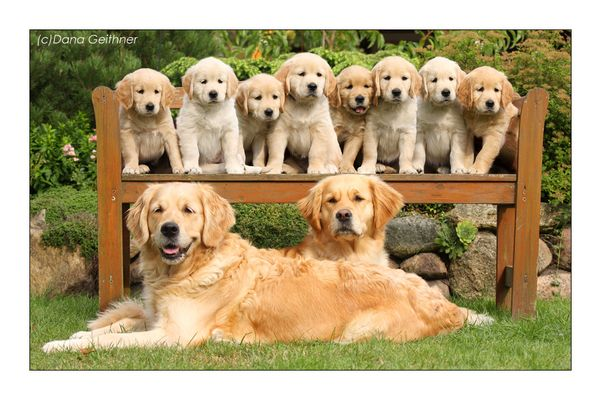 *Familienfoto*