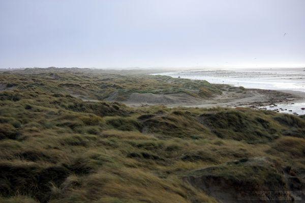 Fanø - dejlig Ø