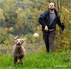 fang den ball II......