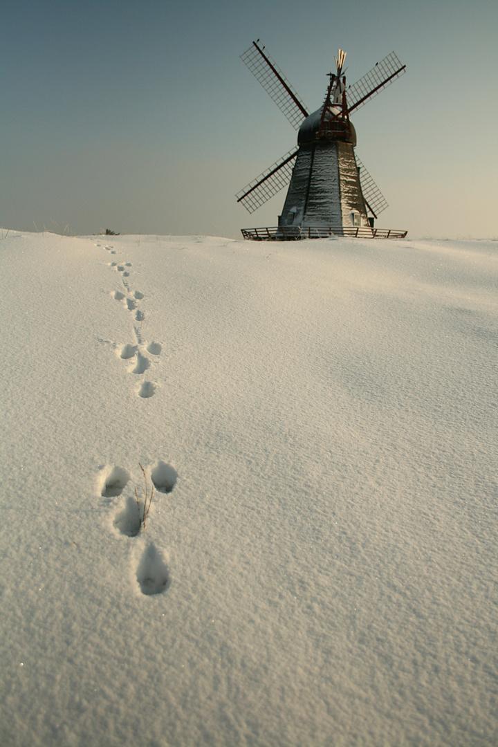Fanö im Winter