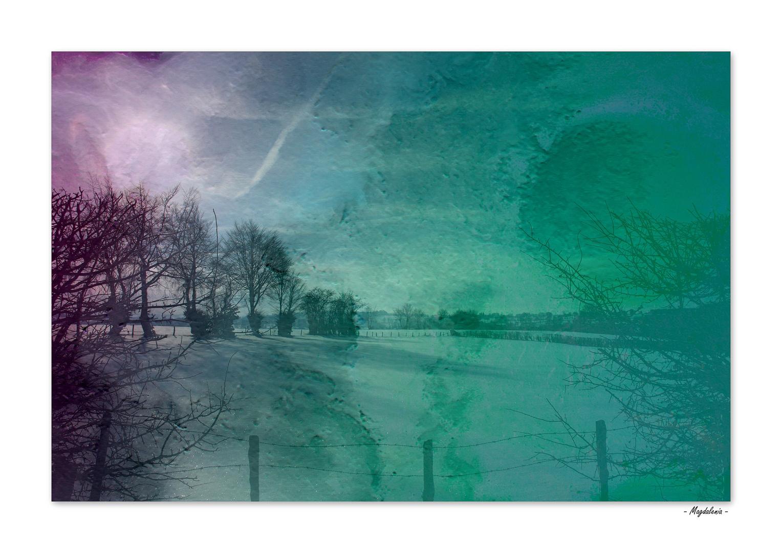 Fantaisie hivernale