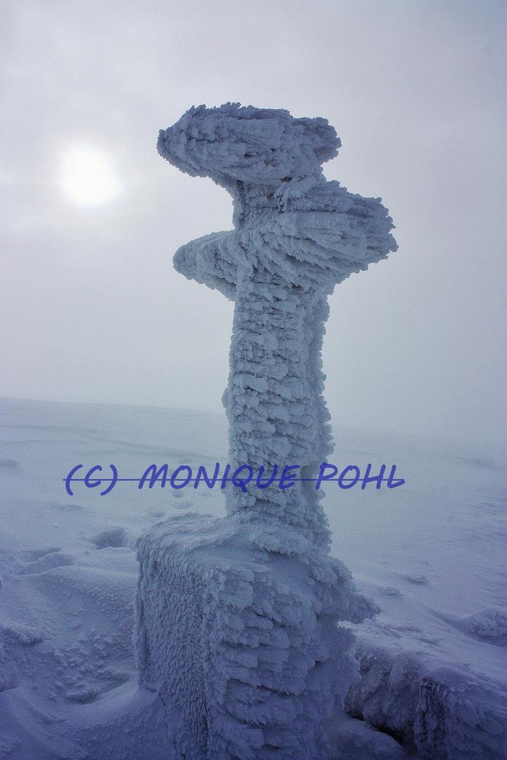 Fantasie im Schnee