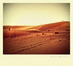 Fantasmi nel deserto