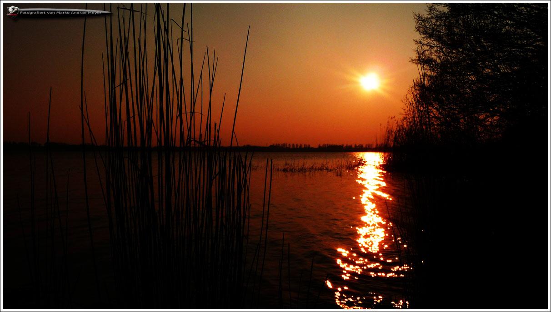 Fantastischer Sonnenuntergang am Windebyer Noor im Ostseebad Eckernförde (Part 2)