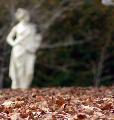 Fantôme dans le parc
