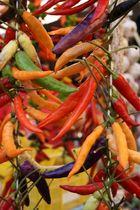 Farbe auf dem Markt